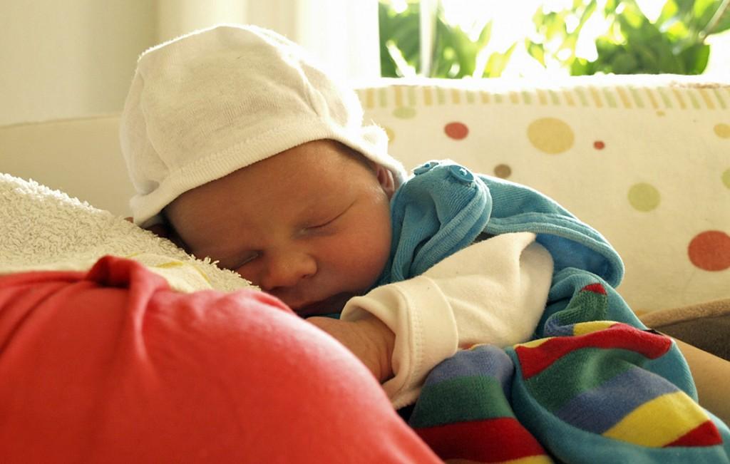 Piet am ersten Tag zuhause.