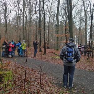Abenteuer Wald, aber nur für Kinder ab 4 Jahren