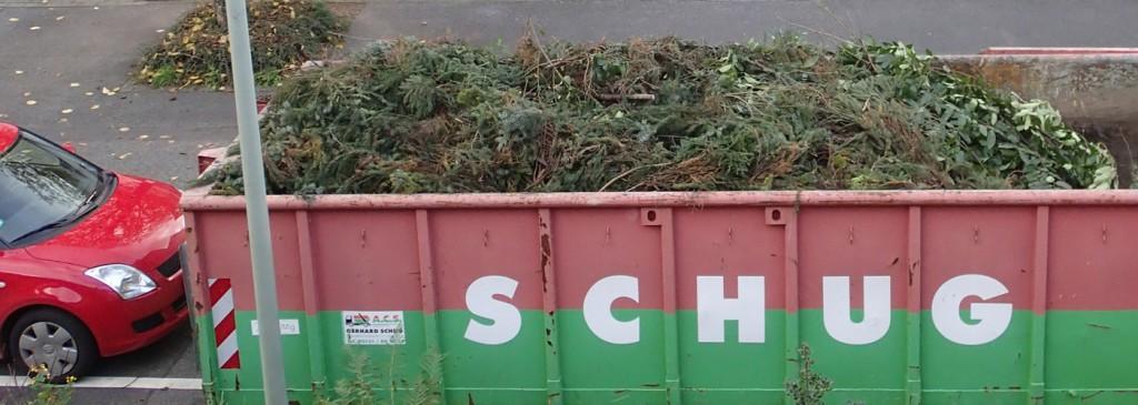 Der 20 m³ Container gegen Mittag, links mein Auto zum Vergleich
