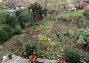 Im Garten ist noch genügend Grünzeug übrig, nur kein Rasen