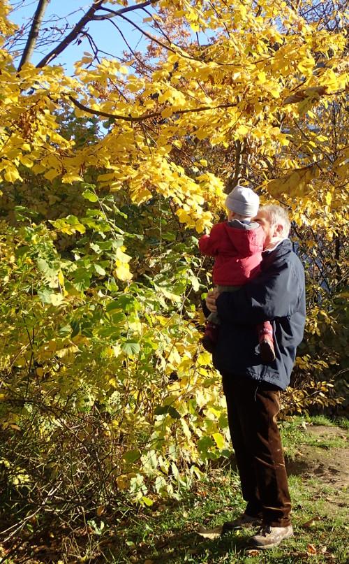 """""""Opa, was hängt da am Baum?"""""""