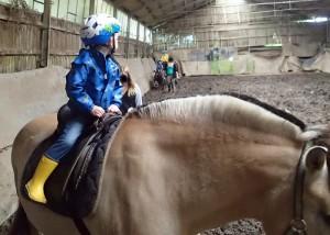 Ponyreiten auf dem Diepeshof
