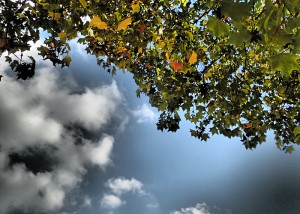 Schönes Wetter im September, das muss man nutzen.
