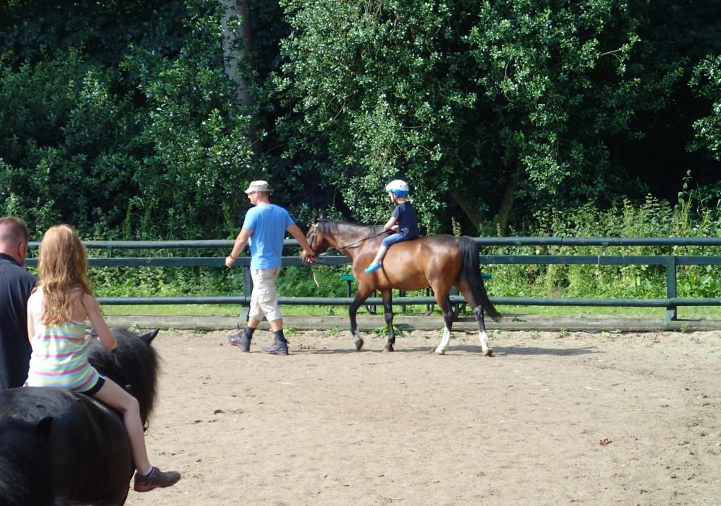 Schloss Dankern: Pony-Reiten mit tollen Tieren