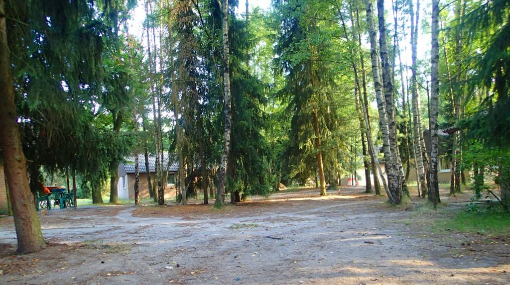 Schloss Dankern: Waldhaus mit Wiese