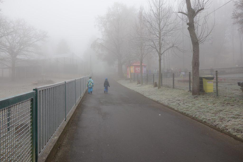 Zoobesuch im Nebel (Neuwied): Ausflugsziel im Silvester-Programm der Jugendherberge Leutesdorf