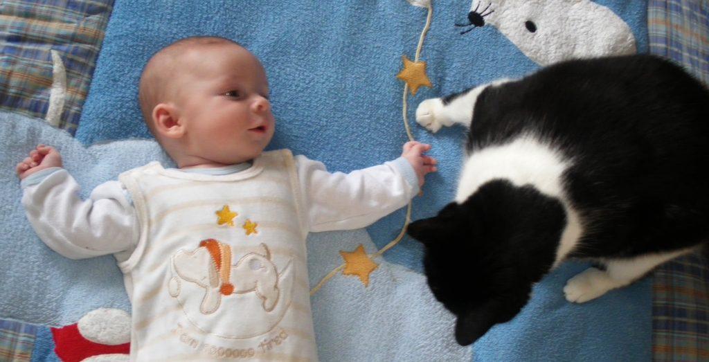 Als die Katze noch schwerer war, als das Kind.